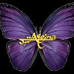 Ayeina-studentsofquran.com